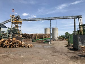 Galvanized M-Series SMART Conveyor at Canfor sawmill - premium wood chip conveyors